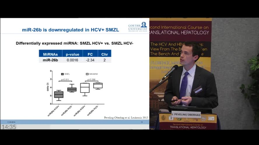 Biomarkers in HCV-related lymphoma