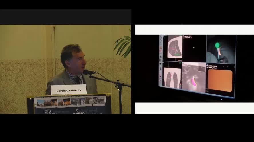 Up-to-date 2015 in pneumologia interventistica: nuovi percorsi e procedure nella gestione delle patologie polmonari