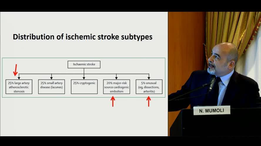Diagnostica ultrasonografica nel paziente con stroke: indicazioni e timing appropriati