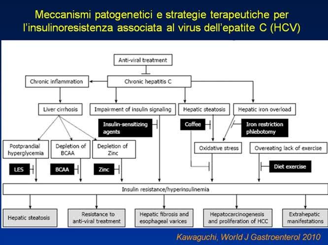 HCV, diabete e sindrome metabolica