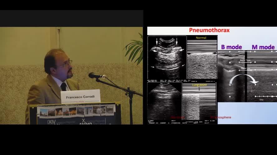 Organi di senso, fonendoscopio ed ultrasuoni: verso una nuova semeiotica